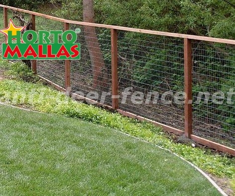 Fence  for protection of plants keeps the integrity