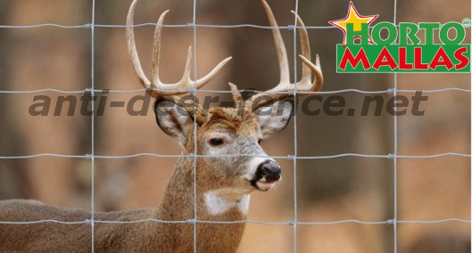 Anti deer fence resistant for the protect of the plants and crops against deer